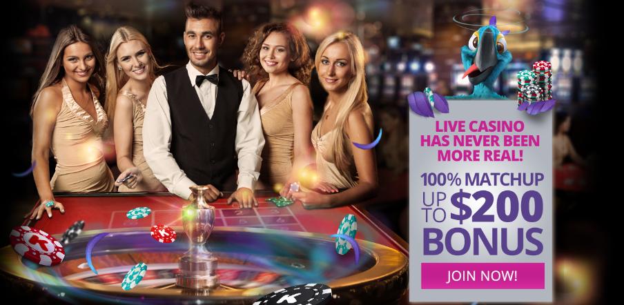 Live Casino Karamba